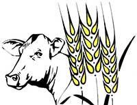 Agrargenossenschaft Kahren/Branitz eG